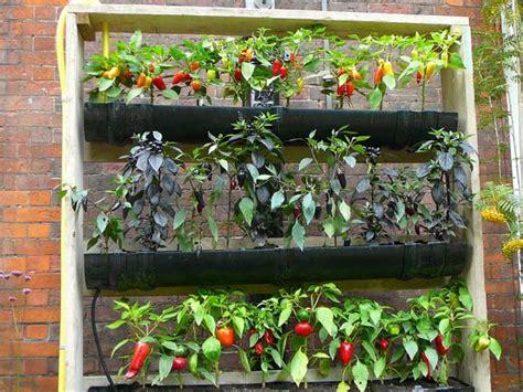 self sufficient garden