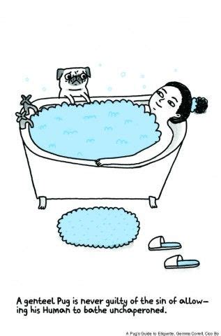 gemma correll pug book 159 best gemma correll images on ha ha stuff and things