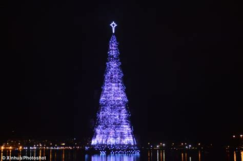trees of lights in brazil world s largest floating tree lights up in de janeiro daily mail