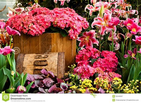 Pink Flower Garden Beautiful Flower Garden Background Royalty Free Stock Photography Image 35049567
