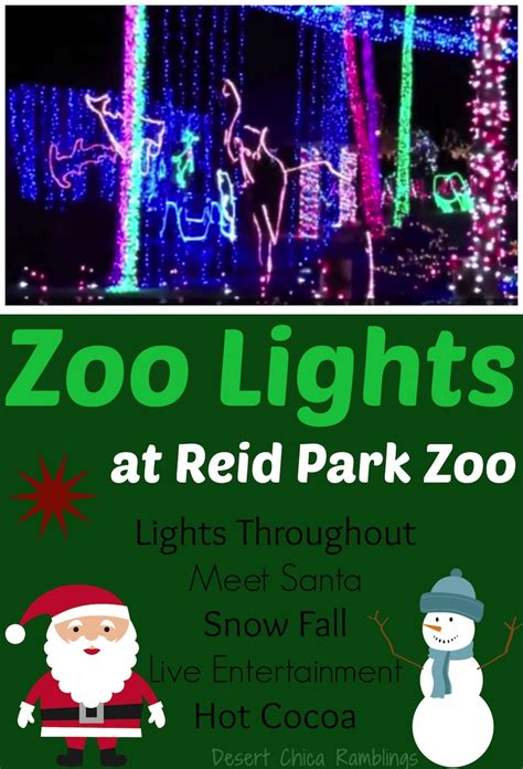 Reid Park Zoo Lights Review Desert Chica How Much Are Zoo Lights Tickets