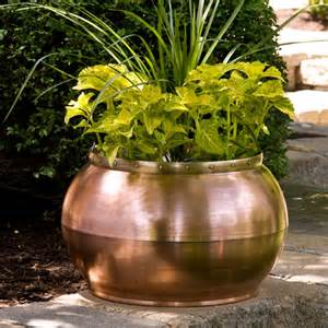 copper bowl planter with decorative band contemporary