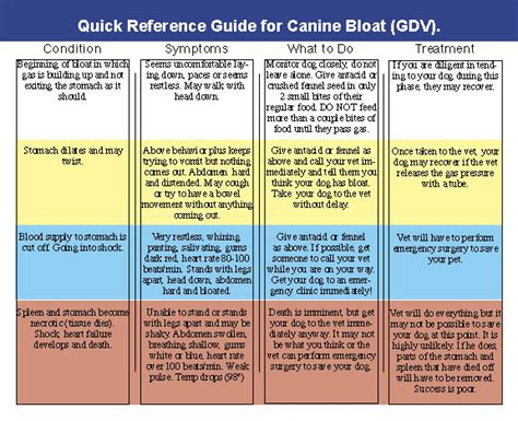 what causes bloat in dogs canine bloat pet allergy sufferers remedies and more