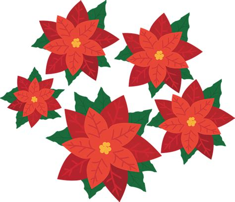 clipart di natale gratis poinsettia flower plant 183 free vector graphic on pixabay