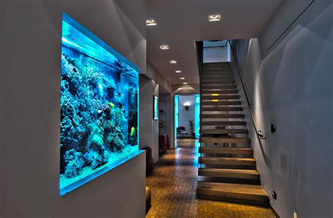 wall aquarium aquatic design centre ltd aquarium design specialists