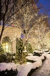 winter garden lights merry outdoor lighting