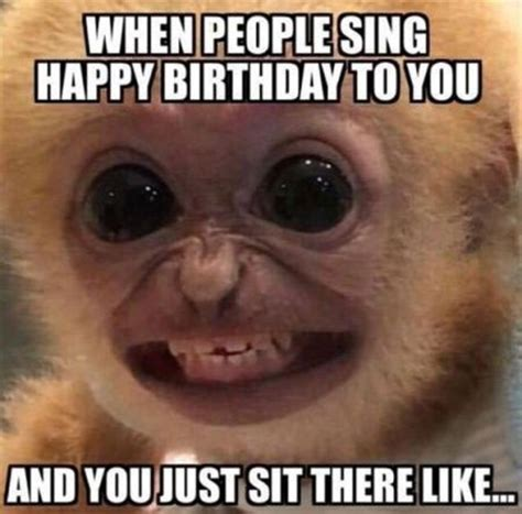 Sarcastic Birthday Meme - 25 best ideas about funny happy birthdays on pinterest