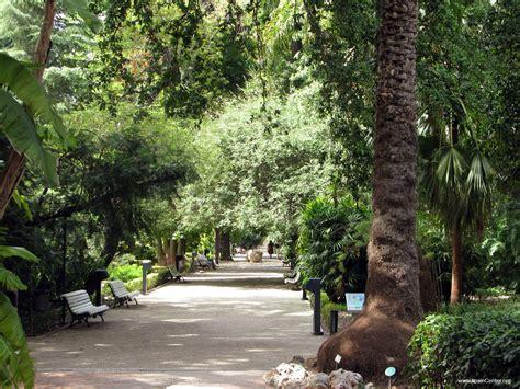 jardines en valencia valencia jardines fotos turismo