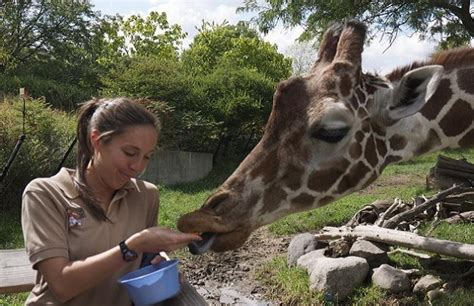 Zoo Keeper by Zoo Keeper Days A Range Of Zoo Keeper Experiences