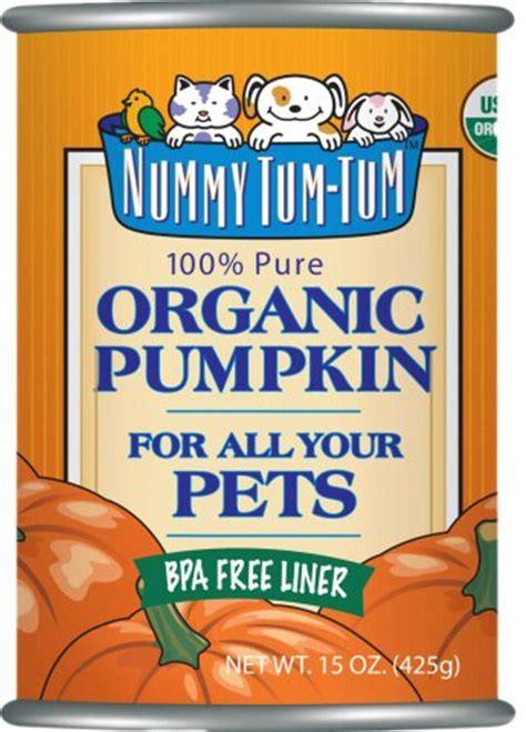 pumpkin puree for dogs 10 top healthy pumpkin rich and cat foods