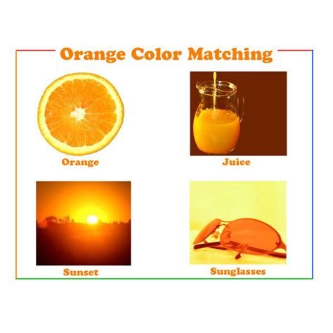 Floor And Decor Smyrna by Orange Color Song 28 Images Orange Song Learn Colors