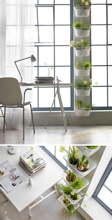 indoor garden ideas indoor garden idea hang your plants from the ceiling