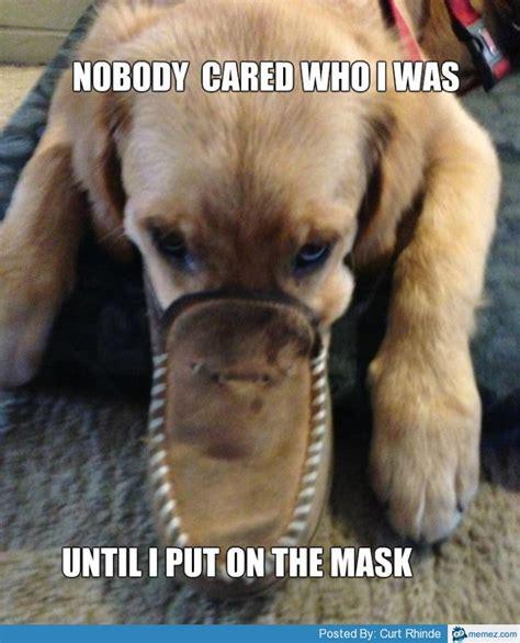 evil puppy evil meme images