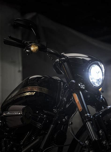 harley davidson motorcycle christmas lights 71 best something special for their bike images on harley davidson store