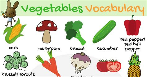 6 vegetables name in vegetables vocabulary in learn names of