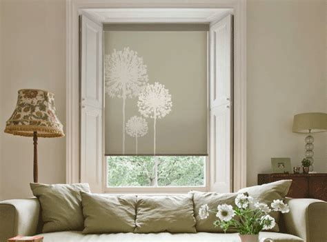 Blinds Hyde persona roller shades you a style all your own and
