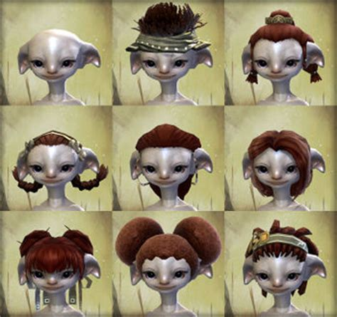 asura guild wars 2 new hairstyles for females physical appearance asura guild wars 2 wiki gw2w