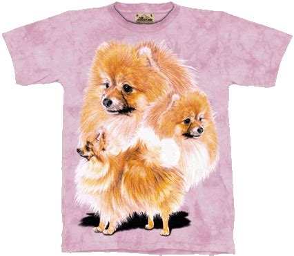 pomeranian gifts les animaux gifts pomeranian