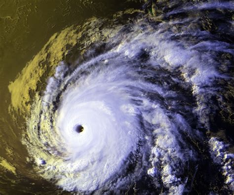 Hurricane Also Search For Hurricane 1994