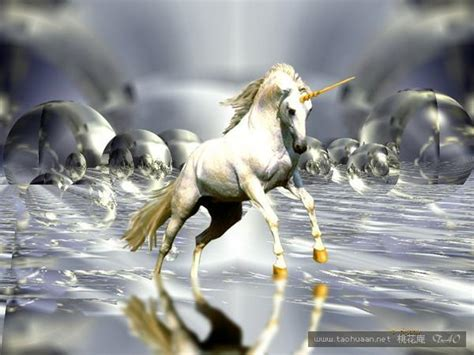 神话生物迷人的形象 如果它们真实存在 新奇 桃花庵