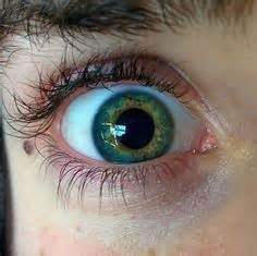 how is eye color determined most eye color what determines your eye color