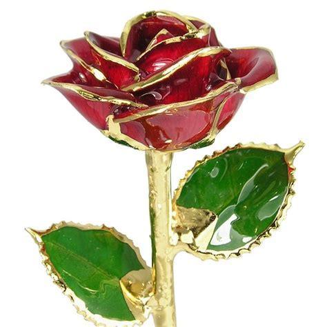 """24k Gold Trimmed Rose: 11"""" Red Rose: Love Is A Rose"""