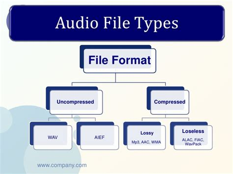 format file audio terbaik audio steganography lsb