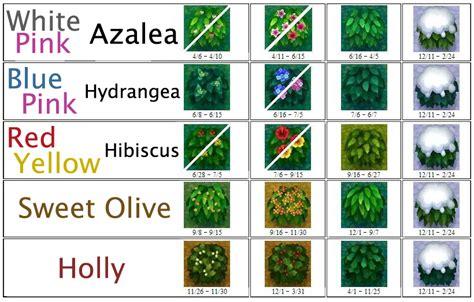 acnl shrubs image bush chart png animal crossing wiki