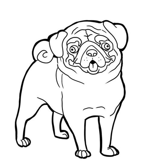 coloring pages of pugs dogs coloring pug and faces on