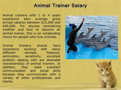 Animal Trainers Salary by Taunton Tips To Become An Animal Trainer