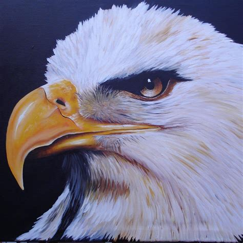 imagenes de aguilas mitologicas aguilas reales aguilasrbb twitter