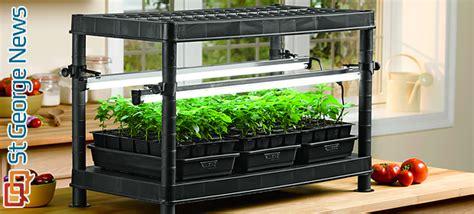 simple steps  seed starting success gardening indoors