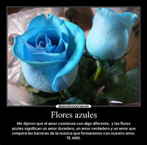 imagenes de rosas azules con frases de amor flores azules con frases de amor imagui