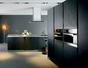 Black Cabinets In Kitchen Black Kitchen Cabinets Photo Gallery Best Kitchen Places
