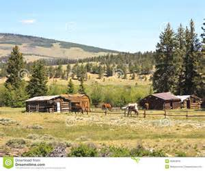 Rancher Logging Horses In Ranch Corral Royalty Free Stock Photos Image