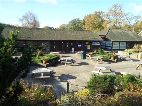 111 Commercial Properties For Rent In Crawley Uk Page 1 Walled Garden Cafe