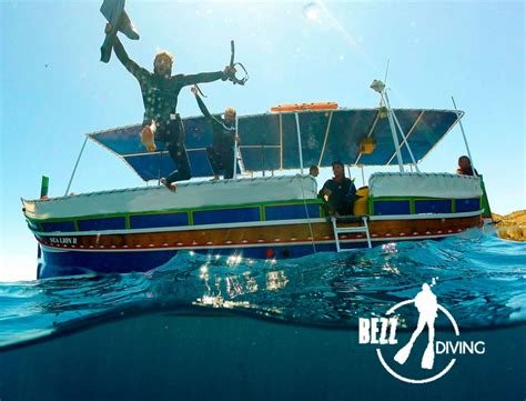 dive malta malta diving scuba diving courses bezz diving malta