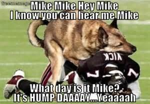 Meme Hump Day - hump day 171 free meme generator sayings pinterest