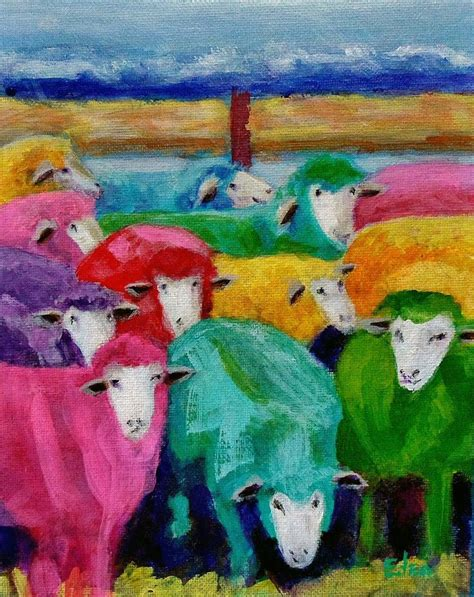 rainbow sheep farm