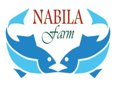 Bibit Ikan Bawal Tasikmalaya nabila farm pusatnya jual benih dan bibit ikan murah