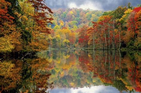 fall colors 2017 the day the color turned off stacy blake beard ph d