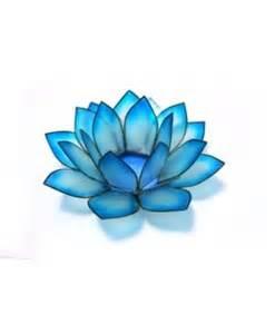 Blue Lotus High Blue Lotus Goddess And Lotus On