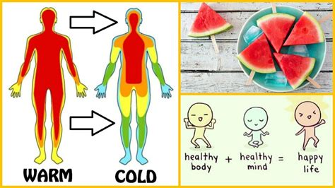 food heat l temperature reduce body heat with food and drink reason for a high