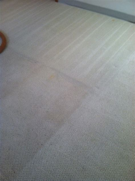 rug cleaning pasadena rons carpet cleaning the specialist carpet cleaning carpet cleaning pasadena images river