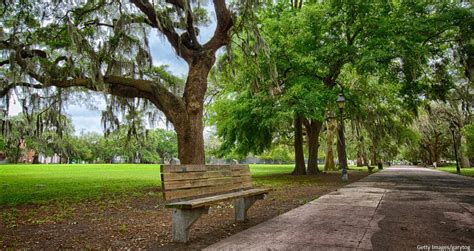 forrest gump bench location what you need to know about the forrest gump bench in