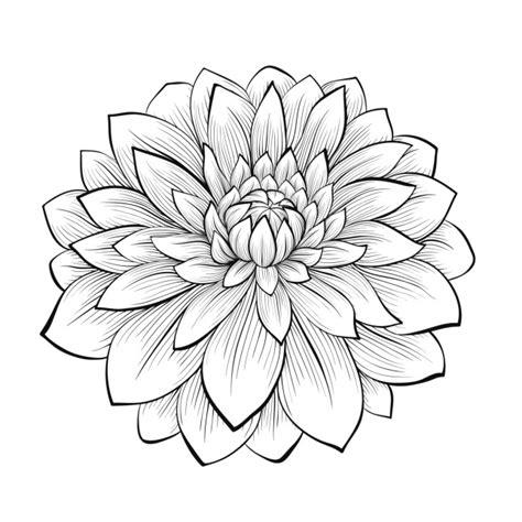 fior di loto disegno tatuaggi con i fiori le idee pi 249 unadonna
