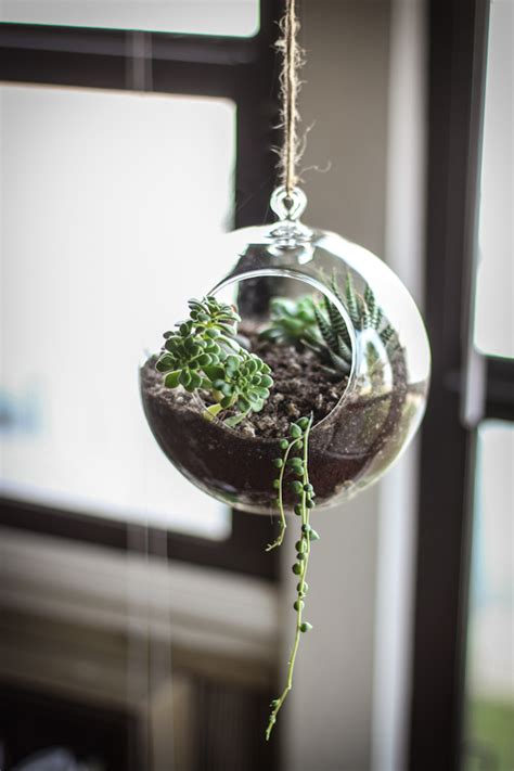 make your own hanging planter side project make your own succulent terrarium planter