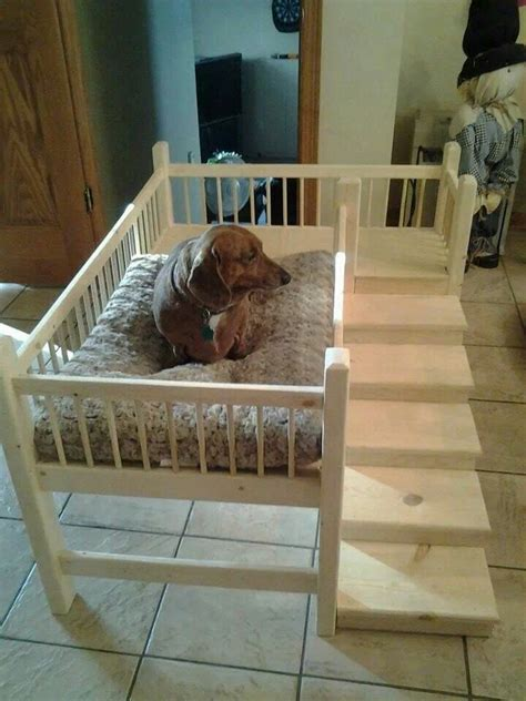 elevated dog bed diy best 25 raised dog beds ideas on pinterest elevated dog