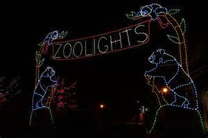 zoo lights washington dc dc insider toursour top picks lights in