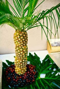 pineapple fruit tree stand pineapple tree centerpieces on pineapple palm